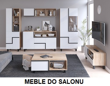 MEBLE DO SALONU